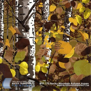 WTP-170 Rocky Mountain Camo Autumn Aspen
